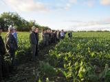 Heartland Soil & Crop Board Members